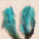 Feather Earrings with 8 feathers total blue and black