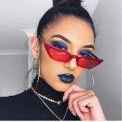 Small Vintage Glasses UV400 Eyewear Shades