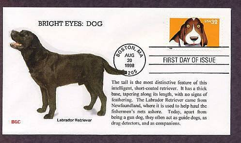 Labrador Retriever Dog, Bright Eyes, First Issue USA