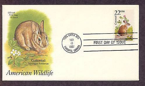 American Wildlife, Cottontail Rabbit, Sylvilagus floridanus, First Issue USA