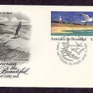 Seashore Issue, Cape Hatteras, North Carolina, Lighthouse 1989 First Issue Postal Card USA