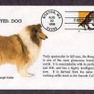 Rough Collie, Dog, Bright Eyes, First Issue USA