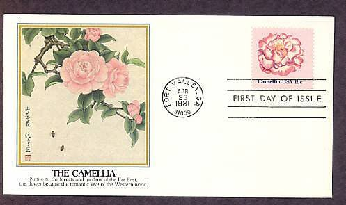 Camellia, First Issue USA