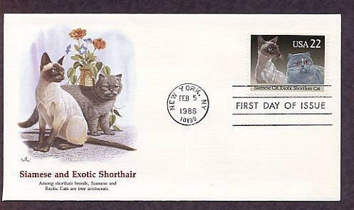 Pet Cats, Siamese and Exotic Shorthair Cat, FW First Issue USA