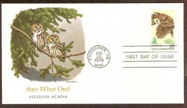 American Owls, Saw-wet Owl, Aegolius acadicus, FW First Issue USA