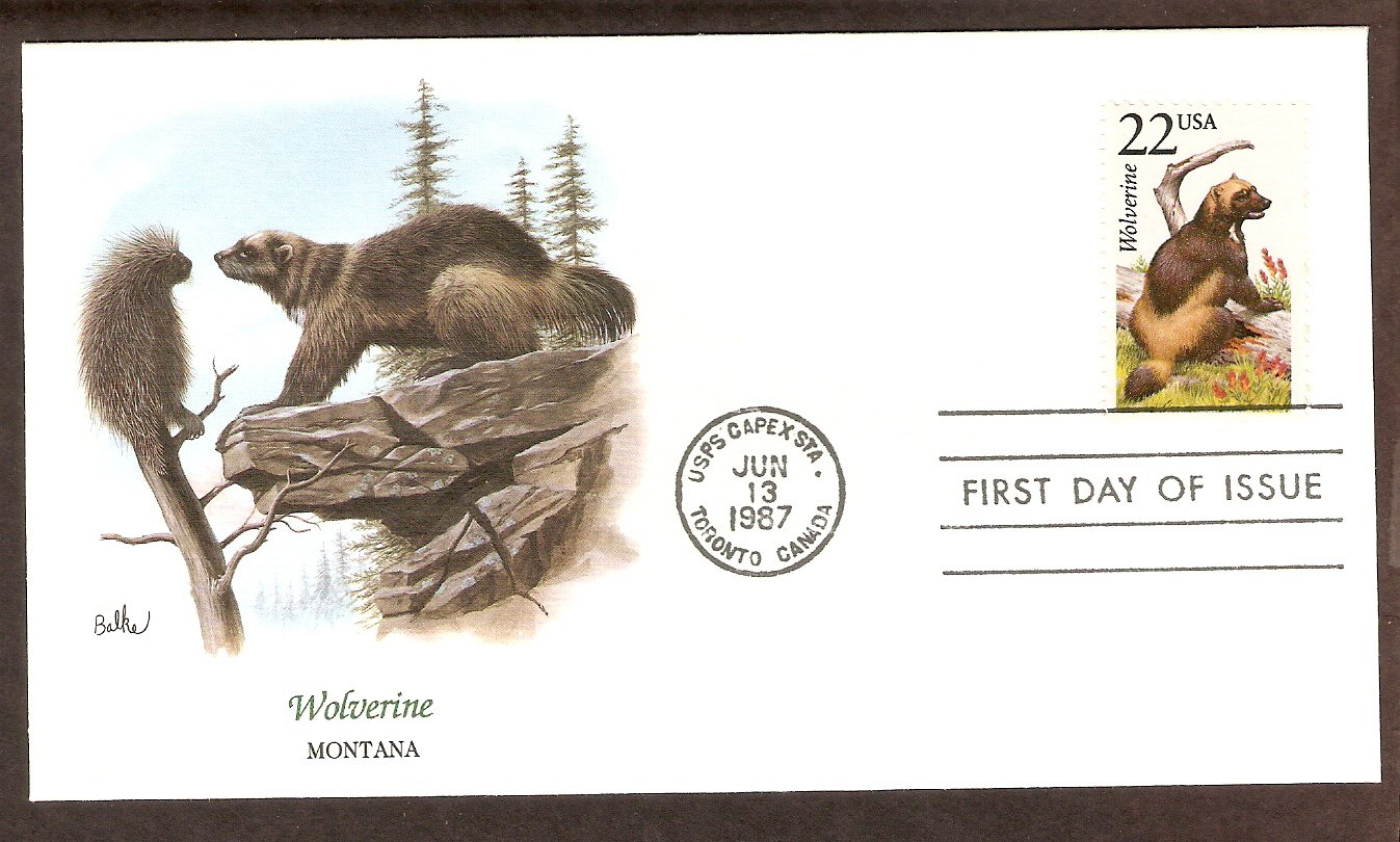 American Wildlife, Wolverine, FW First Issue USA