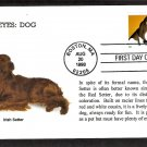 Irish Setter Dog, Bright Eyes, First Issue USA!