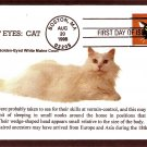 Cats, Bright Eyes, Golden-Eyed White Maine Coon, First Issue USA!