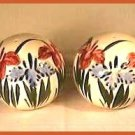 HAND PAINTED SPHERE Salt Pepper SHAKERS - IRISES
