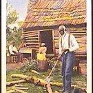 BLACK Americana COLOR PHOTO Postcard