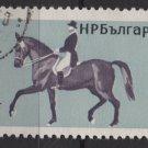 Bulgaria 1965 - Scott 1444  used - 1s, Horsemanship   (7-470)