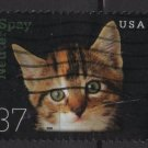 USA 2002 - Scott 3670 used - 37c, Neuter & Spay Kitten (10-183)
