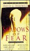 Shadows of Fear: Foundations of Fear Vol 1 Edited by David G Hartwell