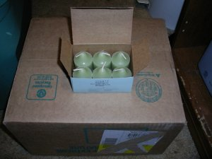 Box of 6 Wild Fern Partylite Votives