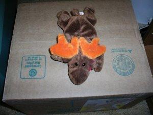 Ty Chocolate Moose