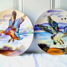 Pair of Vintage Ucagco Ceramics Japan Hand Painted Duck Scenic Nature Plates Set of 2