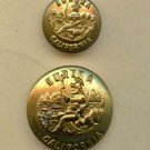 California state seal buttons antique brass coat and cuff size uniform buttons