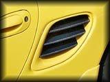 Rear Quarter Panel - Air Intakes