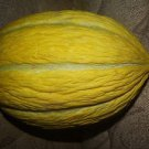 YELLOW WINTER MELON 25 FRESH SEEDS