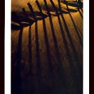 A4 Framed Landscape Print - Sand Fence In The Evening
