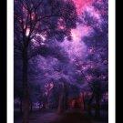 A4 Framed Landscape Print - Sanctuary