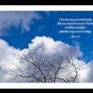 A4 Framed Landscape Print - John 15:5