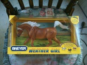 BREYER Weather Girl Sunny #1463 treasure hunt WITHOUT UPC
