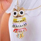 Colorful Owl pendant Sweater Chain Necklace