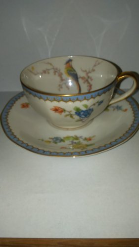 Theodore Haviland Limoges France Paradise Cup & Saucer