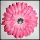 20 Pink Gerber Daisy
