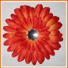 20 Orange Gerber Daisy
