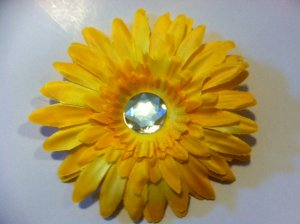 20 Yellow Gerber Daisy
