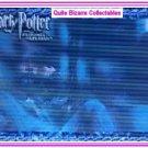 Harry Potter PoA Sirius Black Gary Oldman Motion Card