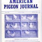 American Pigeon Journal Magazine June 1956,$10.00 Free Shipping to the USA,bird