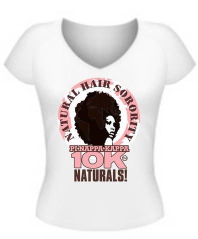 Classic Signature Pi Nappa Kappa Logo T Shirt