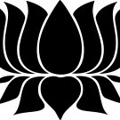Lotus Custom Made Vinyl Sticker Decal 005, Car Decal, Bumper Sticker, Laptop Decal, Window Sticker