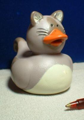 Kitten Rubber Ducky - Grey