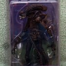 Alien Xenomorph Warrior action figure NECA
