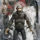 Planet of the Apes Caesar Action Figure NECA  (Free Shipping)