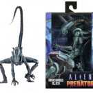 Alien vs Predator Arcade Arachnoid Figure NECA (Free Shipping)