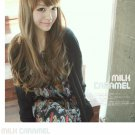 Free Shipping high quality Guarantee100% Hot-sales brand new  wig W033 Oblique bangs long hair