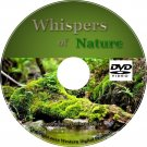 DVD Whispers of Nature Rainforest River Ambience
