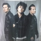 GREEN DAY American Idiot FLAG CLOTH POSTER WALL TAPESTRY BANNER CD