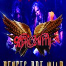 AEROSMITH Deuces Are Wild FLAG CLOTH POSTER WALL TAPESTRY CD LP