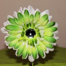 Gerbera Lime and White Daisy Clippie