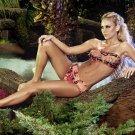 2012 Paradizia Swimwear Atlantis Bandeau Bikini