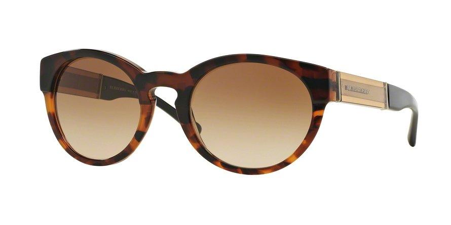 Burberry 0BE4205 Havana Sunglasses