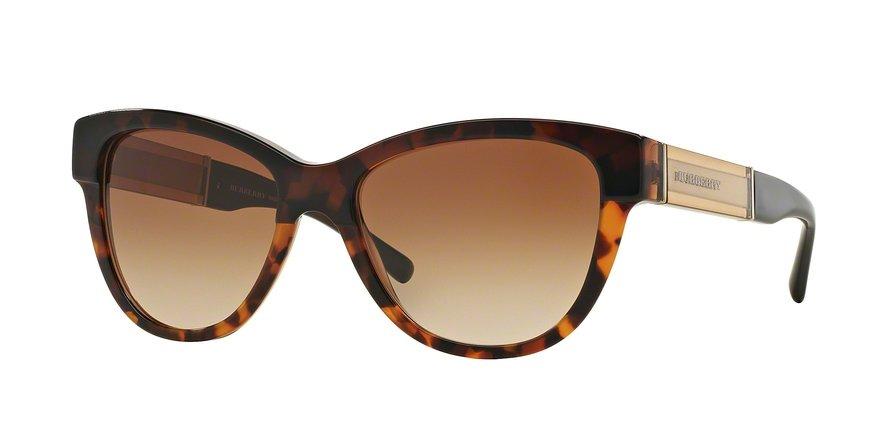 Burberry 0BE4206 Havana Sunglasses