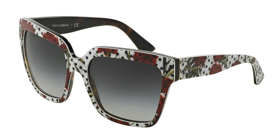 Dolce & Gabbana 0DG4234 Multi Sunglasses