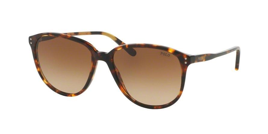 Polo 0PH4097 Havana Sunglasses